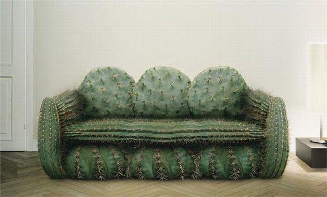 Вывоз старого дивана кактус